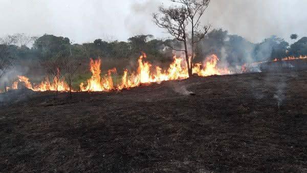 Rio Branco em chamas! Município no Acre está entre os 10 com maior índice de queimadas