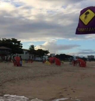Qual a motivação dos ataques de tubarão serem comuns na praia de Piedade?